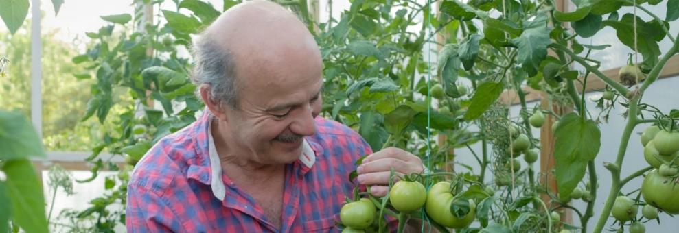 man in moestuin